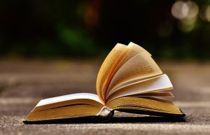 aufgeschalgenes Buch