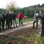 Exkursion in den staatlichen Realwald Ulm-Ermingen