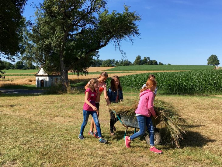 Besuch auf dem Bauernhof der Klasse 5e