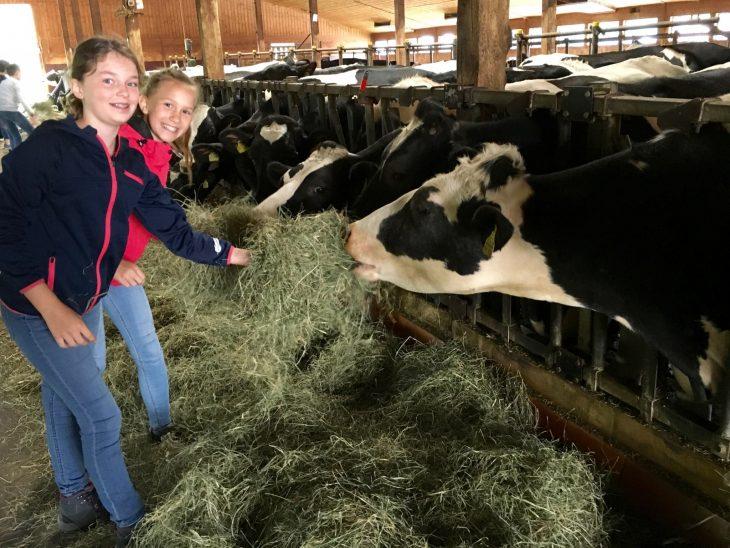 Besuch auf dem Bauernhof der Klasse 5c